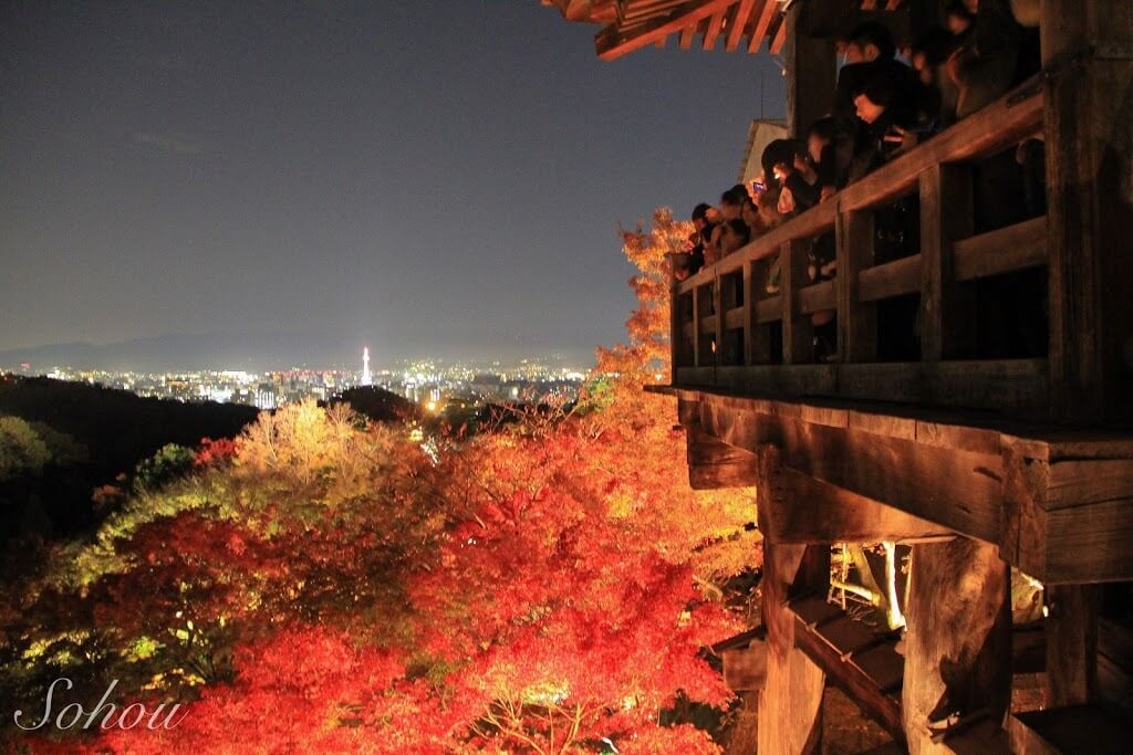 京都清水寺の紅葉ライトアップ